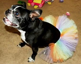 Rainbow Dog Tutu:  Pastel Rainbow Dog Tutu (Pink, Peach, Yellow, Mint Green, Baby Blue, Lavender) - XS, Small, Medium, Large, or XL