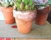 Terracotta Vintage Mini Pots Succulent Favors Perfect for Wedding, Event or Home Decor