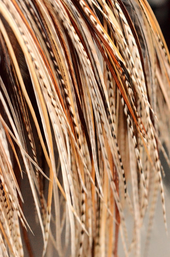 Natural Unique Variant Extensions/QTY 10 Natural True Variant Saddle Feathers