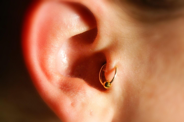 сонник сережки на ушах золотые