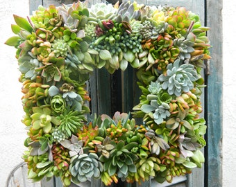 "Succulent Wreath, Succulent Wreath Square 18"", Fall Succulent Wedding, Wedding Decor, Fall Table Centerpiece, Housewarming Gift"