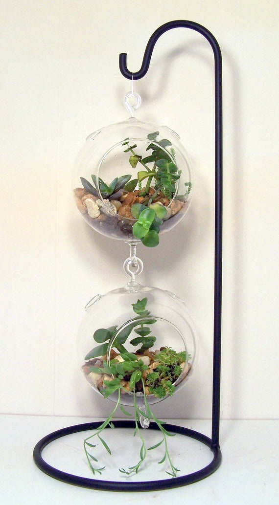 large hanging glass terrarium stand or by flatherscreations. Black Bedroom Furniture Sets. Home Design Ideas