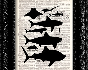 Shark Poster Print -  Vintage Dictionary Print Vintage Book Print Page Art Upcycled Vintage Book Art