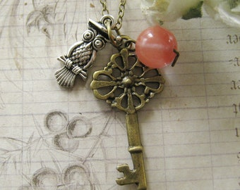 Secret key with Mr Doctor owl