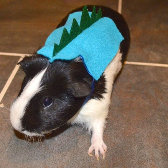 Dinosaur guinea pig. Pet Halloween costumes by la Marmota Café.