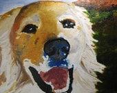 Golden Retriever painting, original art