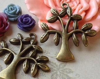 31 mm x 33 mm Antique Bronze Olive Tree Charm Pendants (.ng)