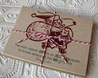 "Sassy and Sarcastic ""Bad Santa""  Christmas Note Cards for grown-ups set of 20"