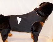 RockinDogs Large Dog Custom Tuxedo Vest and Bow Tie Collar Set. Match your wedding colors