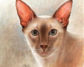 Original Oil CAT Portrait Painting BALINESE Art On Canvas Kitten Artist Signed