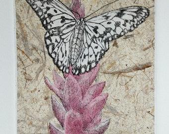 PAPER KITE, butterfly, original zinc plate etching