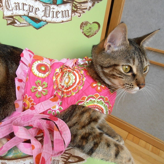 Hot Pink Orange Cat Harness with Leash, Reversible Pet Harness, Teacup Girl Dog Clothes