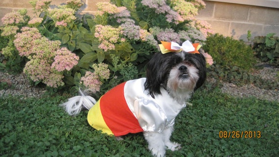 Candy Corn Unique Dog Costume size Medium