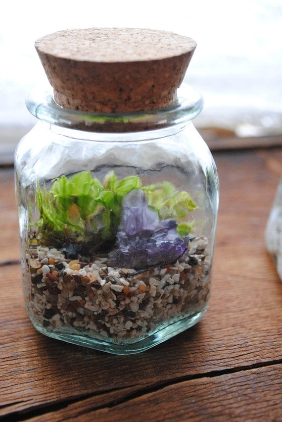 Terrarium Vintage Natural Glass Bottle with Amethyst Crystal