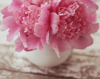 flowers, pink, peonies, fine art photography