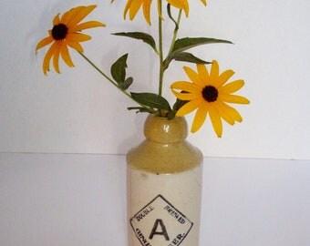 Antique Ginger Beer Bottle Robinson-Merrill Pottery Co. Primitive Decorative Bottle