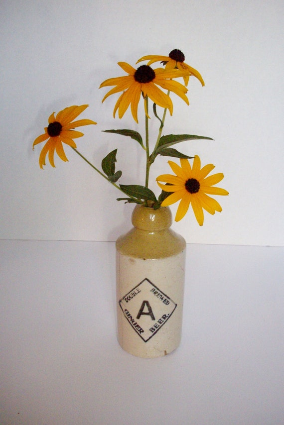 Antique Ginger Beer Bottle Robinson-Merrill Pottery Co. Primitive