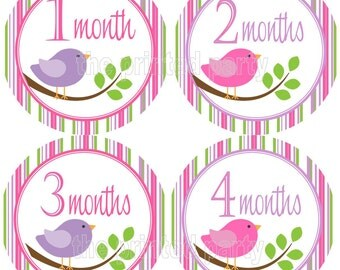 Monthly Stickers - Personalized Month Stickers - Photo Prop - Little Birdies 2 - 105