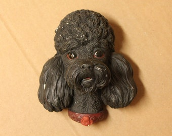 Black Poodle Head Bossons England
