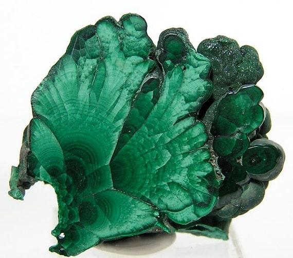 Polished Green Malachite Slice OOAK