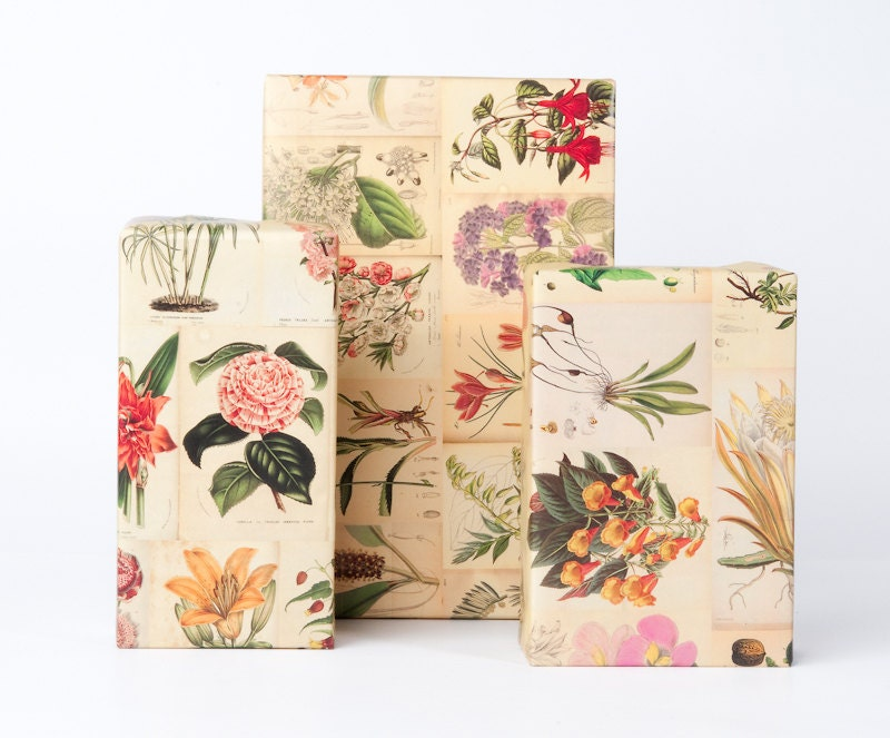 geometric gift wrap roll botanical wrapping paper 12 sheets