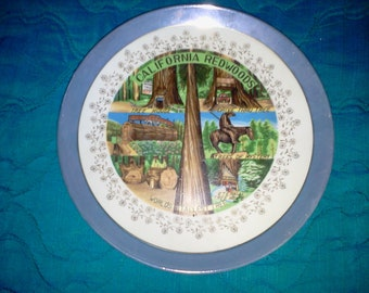"California Redwoods souvenir plate from yesteryear, 8 1/2"" round."