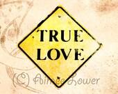 True Love 10x10 Metallic Print