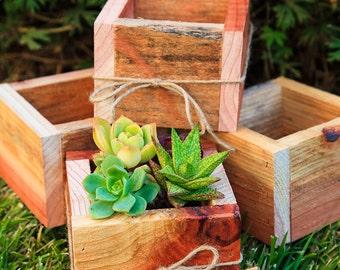 "Set of 4 -- 5x5"" Succulent Planter Box - Redwood"