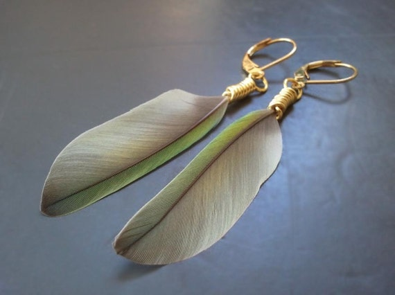 Gold Wire Wrapped Lovebird Feather Earrings