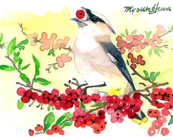 ACEO Limited Edition 3/25- Fun with berries, Art print of an ACEO original watercolor by Anna, Cedar waxwing painting, Gift for bird lovers