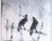 Crows In Rain   NEW
