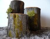 Western Juniper Wood Fence Post Tea Light Candle Holder Set of 3