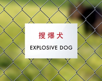 Funny Dog Sign Fail. Chinese Humor for Little Poop Machines. Cute Chinglish Signage. Explosive Dog