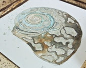 """Abalone Sparkly Shell 6""""x6"""" Original Watercolor"""