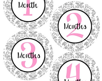 BABY MONTH STICKERS - Damask Baby Month Milestone Stickers - Light Pink and Grey Baby Month Stickers - Mary