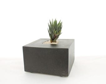 Black Cube Planter