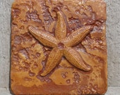 6x6 Accent Tile - Starfish - More colors available