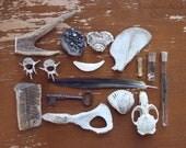 RESERVED Natural History Collection, Number 014. Skull, Claws, Teeth, Antler, Vertebrae, Manganite, Feather, Tarantula.