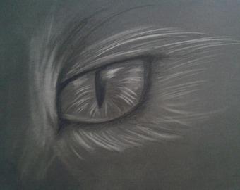 Cat Eye Original Drawing