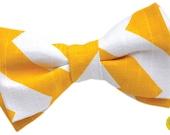 Yellow, Zig Zag, Chevron Pet Bow Tie