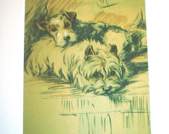 Print and Card option - Signed mounted 1936 Lucy Dawson Fox terrier and cairn terrier dog plate print Unique gift