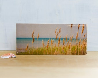Shoreline Photo Transfer Mini by Patrick Lajoie