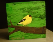 Gold Finch Showing Out, an original mini-acrylic painting on wood by Rachel Dickson