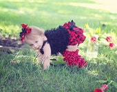 Lady Bug Ladybug Baby Girl Toddler Outfit- Lace Ruffled Black Pettitop, Red & Black Polka Dot Bloomers, Leg Warmers and Hair bow