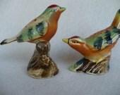 Bird animal Salt and Pepper Shaker, Vintage