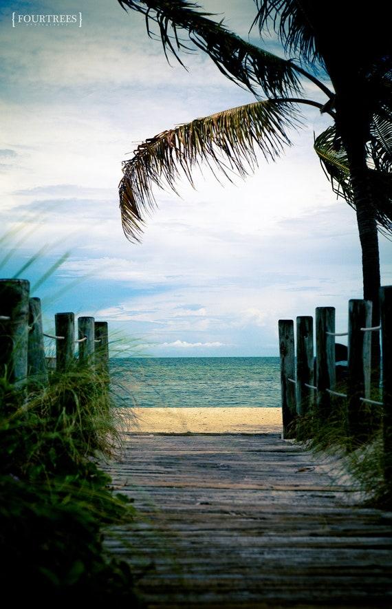 Sea And Sky - 8x12 Beach palm tree photography print beach theme home nursery room decor wall art ocean tropical silhouette sand sky sea