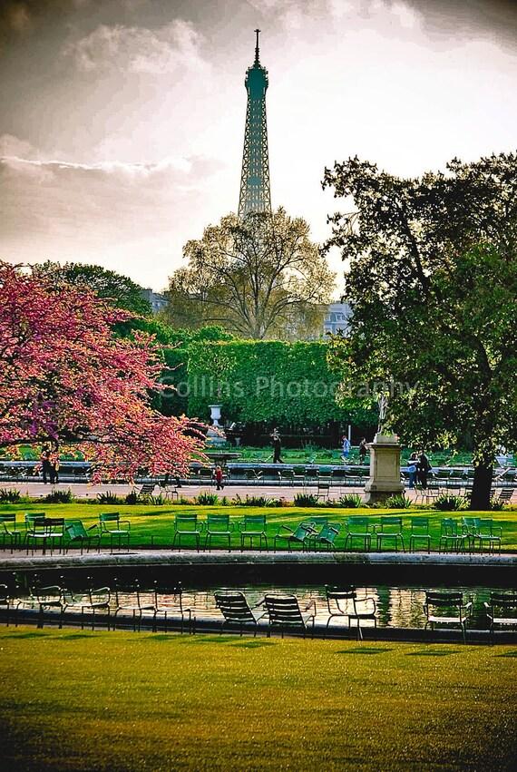 Jardin des Tuileries,View of the Eiffel,Fine Art Photography,Paris,France,multiple sizes available-parisian,clock,museum,time,orleans, paris