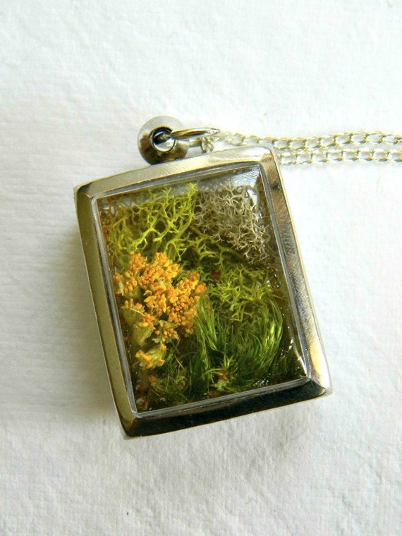 Forest Floor... Dried Flowers, Forest Moss, Woodland Diarama