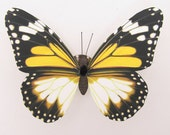 Wedding decoration  Lifelike butterflies suitable for wedding decoration safety and environmental protection  children's room decor adsorbed