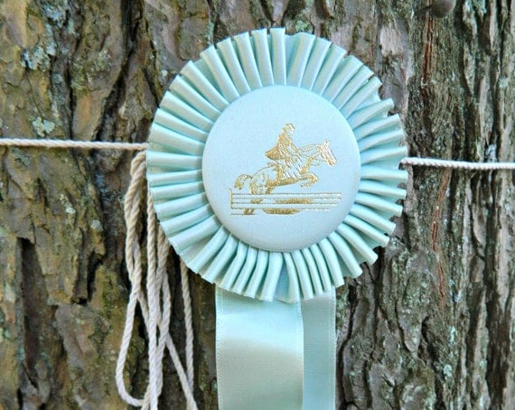 Sweet Baby Blue Vintage Horse Ribbon